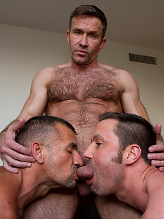 Hairy daddies with hard bodies gather for a naughty threesome with sexy sucking and fucking