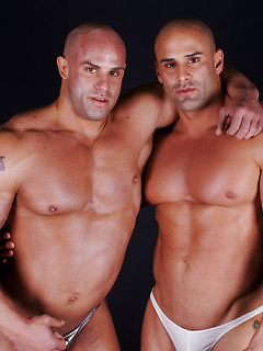 Muscular guys with bald heads and big bulges in their underwear pose and play together