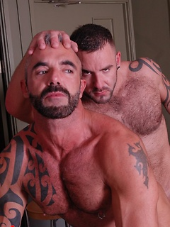 Hairy hunk Bruno Knight tops the asshole of sexy daddy Samson Stone