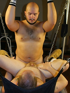 Bear buddies have a new sex swing to try out and they have good bareback anal in it