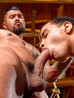 Gorgeous top Boomer Banks uses his big cock to fill the tight ass of his bottom boy