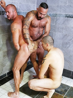 Intense gay threesome session in the gym with incredibly hung stallions
