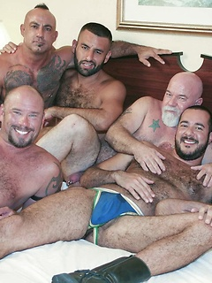 Bear orgy in a hotel room with a group of hot and hairy guys having crazy fun