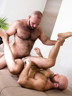 Bearded bears with perfect daddy bodies have the hottest bareback anal sex