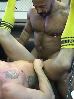 After workout anal sex in the gym with a pair of thick and sweaty bears
