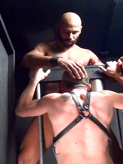 Bearded stud has hi boyfriend sucking on his long member before fucking him hard